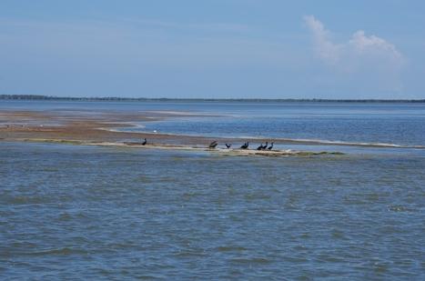 Grand voyage en voilier: Nord de la Floride, Daytona Beach   Voyage en Catamaran, rien de plus simple.   Scoop.it