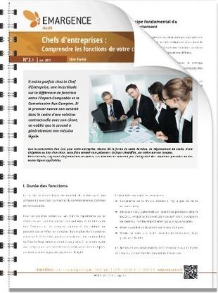 Chefs d'entreprises : Comprendre les fonctions de votre Commissaire Aux Comptes (première partie) | Groupe EMARGENCE | Frédéric Gouvet | Scoop.it