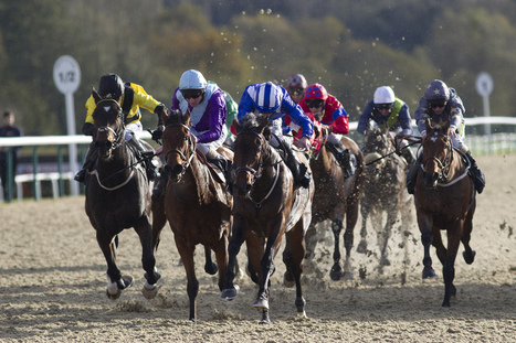 Your own Guru Secrets For Racing At Lingfield Park Racecourse | Through Mike's Eyes | Scoop.it