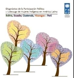 Diagnóstico de la Participación Política y Liderazgo de Mujeres Indígenas en América Latina PNUD | Genera Igualdad | Scoop.it