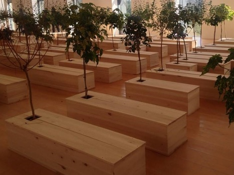 Succès mitigé pour l'exposition Yoko Ono à Lyon | Le Mac LYON dans la presse | Scoop.it