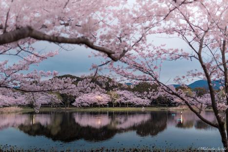 Gorgeous Landscapes Reveal the Idyllic Tranquility of Japan | Le It e Amo ✪ | Scoop.it