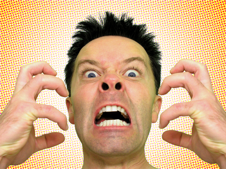 JetBlue captain goes berserk on NYC-to-Vegas flight   MORONS MAKING THE NEWS   Scoop.it