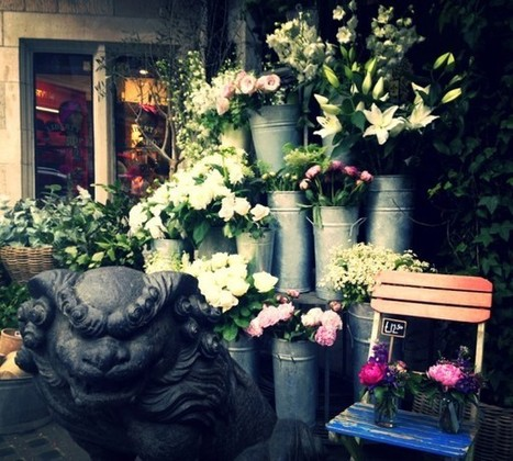 Wild at Heart Florist, London | Travel Tips | Scoop.it