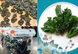 BrusselKale combines trendy veggies to create a new superfood | Kickin' Kickers | Scoop.it