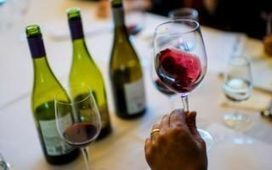 Don't bother 'demystifying' wine  – the magic is in what we don't know | Vitabella Wine Daily Gossip | Scoop.it