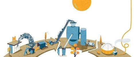 La chasse au gaspillage | L'écologie territoriale | Scoop.it