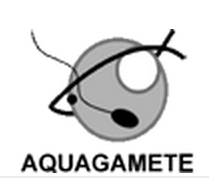 AQUAGAMETE Training schools | Aqua-tnet | Scoop.it
