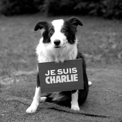 #JeSuisCharlie #FreedomOfThePress Charlie Hebdo attack was also a 'blow for the rights of animals' | My Yonk | Scoop.it
