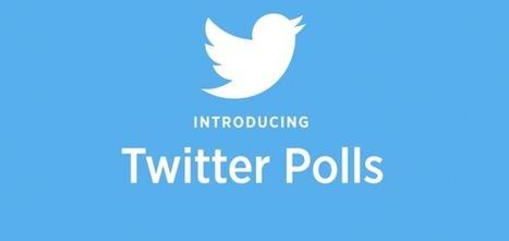 Les Questions Twitter, un outil d'engagement ou d'insight ? | Social media, curation & webmarketing | Scoop.it