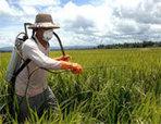 Böcek İlaçlama | Böcek ilaçlama - İlaçlama Servisi - Haşere İlaçlama | Mobil Klima | Scoop.it