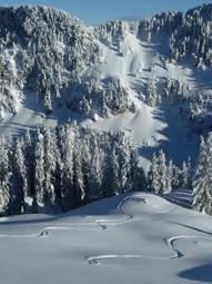 [Glisse] – Ski hors piste, une pratique en vogue | Plusdeneige.fr - Le site 100% neige | montagne | Scoop.it
