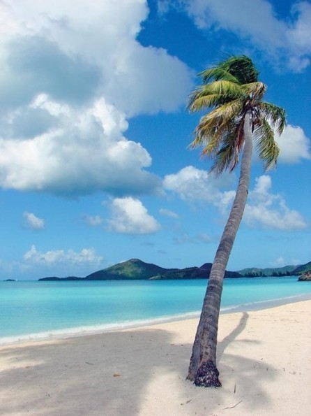 Valley Church Beach Antigua   The Best Places in the World to Travel   Scoop.it