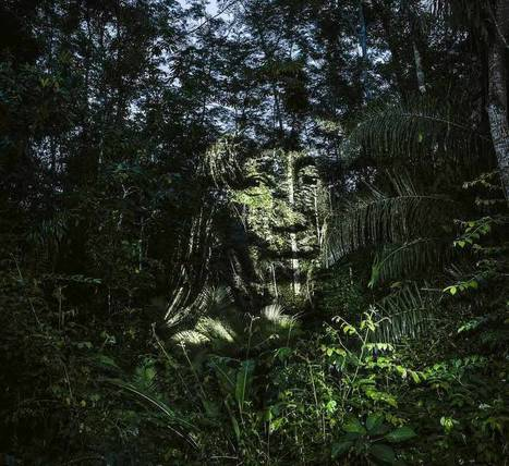 Stunning Video Projections of Indians in the Amazonian Forest | Landart, art environnemental | Scoop.it