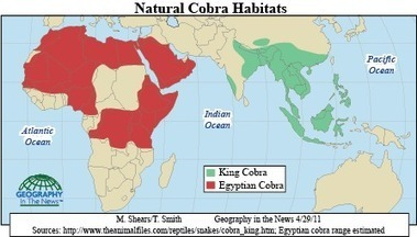 Geography in the News: Cobras   Geography in the News   Scoop.it