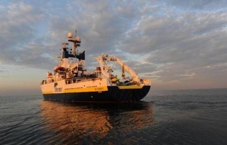 Sardines et anchois: l'Ifremer tente de comprendre la raréfaction en Méditerrannée   Les AMP en Méditerranée   Scoop.it
