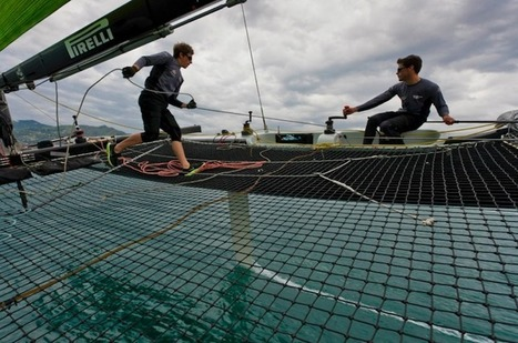Team Tilt enter Extreme Sailing Series™ Istanbul and Porto Acts » Extreme Sailing Series | Red Bull Youth America's Cup | Scoop.it