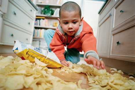 The Truth Behind the Five-Second Rule Revealed | Media Cultures: Microbiology in the news | Scoop.it