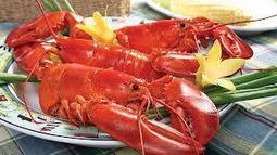 Get Maine Lobsters Online | Facebook | Seafood | Scoop.it