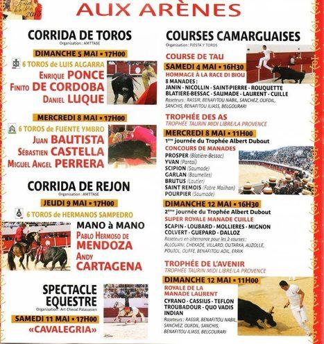 Palavas Féria 2013   Toro Campo   Toro Campo Annuaire Taurin   Scoop.it