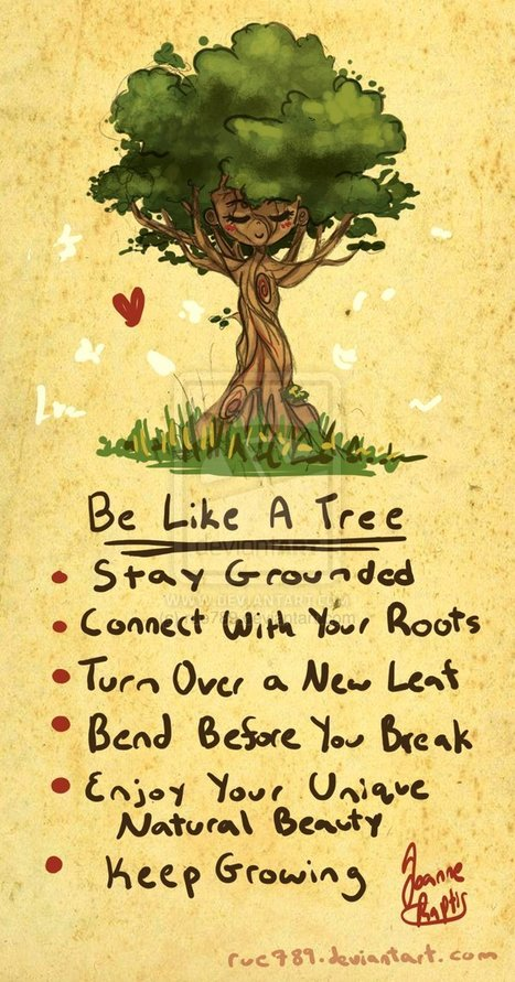 Be like a tree | Education for Sustainable Development | Scoop.it