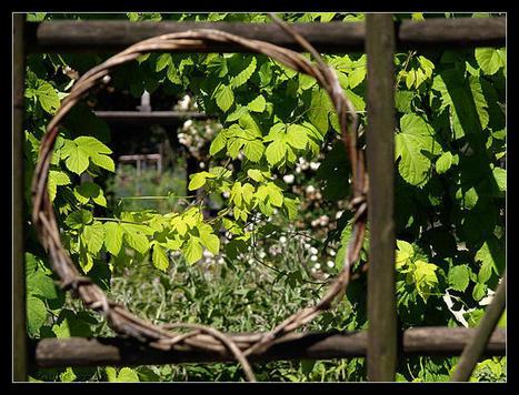 Quimper : au jardin du Prieuré | Revue de Web par ClC | Scoop.it