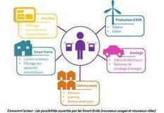 Smart grids, promesses et consommateurs - Energie2007 | Energy Market - Technology - Management | Scoop.it