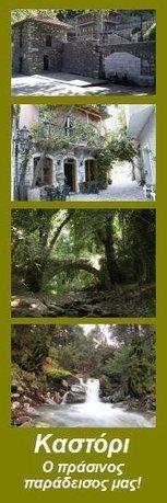 Νέο Facebook Fan Page - Καστόρι Λακωνίας - Ο Πράσινος παράδεισος μας!   Καστόρειο - Λακωνίας - News   Scoop.it