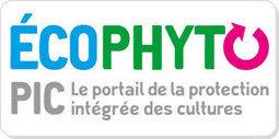 Présentation d'EcophytoPIC - Ministère de l'agriculture, de l'agroalimentaire et de la forêt | AGRONOMIE VEGETAL | Scoop.it