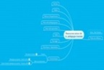 Ressources sur la classe inversée : Carte heuri... | TIC et TICE mais... en français | Scoop.it