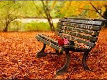 10 Idioms Linked To The Vocabulary of Autumn | Njaanam1  ESL | Scoop.it