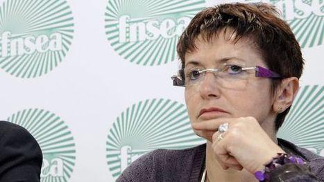 Christiane Lambert, la nouvelle voix du milieu agricole   De la Fourche à la Fourchette (Agriculture Agroalimentaire)   Scoop.it