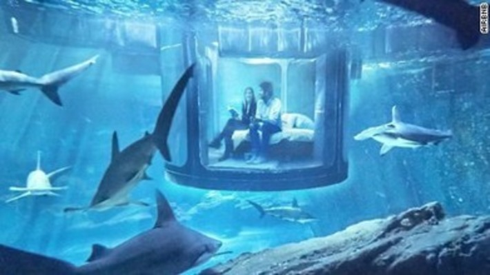Wanna sleep with the sharks? It's at the Paris Aquarium. | Scuba Diving News | Scoop.it