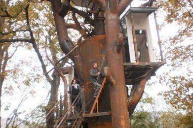 Un arbre insolite - Sud Ouest   Maison   Scoop.it