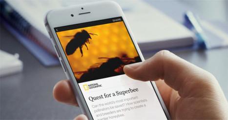 Facebook généralise les Instant Articles, et le Washington Post en publiera 1200 par jour   Stratégie digitale et e-réputation   Scoop.it