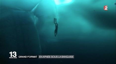 Découverte : en #apnée sous la #banquise - #video #baleine #orque #Norvège | Hurtigruten Arctique Antarctique | Scoop.it