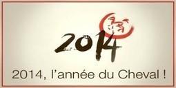 Meilleurs voeux pour cette nouvelle année 2014 | Equum.fr | Scoop.it