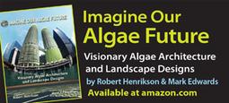 USU Study Shows Algae Beats Soybean for Biodiesel :Algae Industry Magazine | Sustain Our Earth | Scoop.it