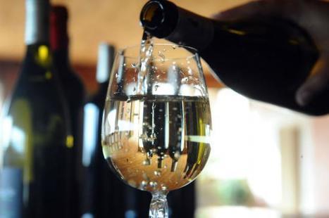 Au Sénégal, le premier millésime du Clos des Baobabs | Le vin quotidien | Scoop.it