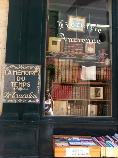 Les Châteaux de LaLoire | Châteaux de la Loire et Jardins de France | Scoop.it