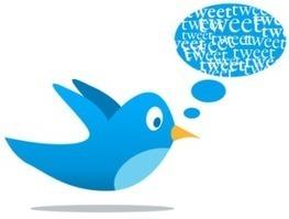 Twittos, Tweeteurs ou Twittonautes... comment appeler ceux qui tweetent? - Nouveau Monde - High Tech - France Info   Web & Internet   Scoop.it