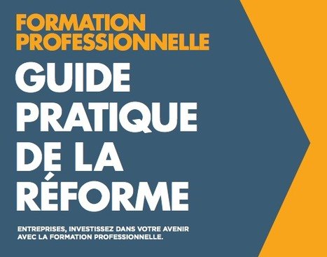 Guide pratique de la réforme de la Formation Professionnelle | PEDAGO-ANDRAGO-APPRENANCE | Scoop.it