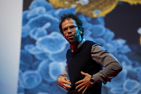 TEDx Delft: My microbial self & I | Microbial World | Scoop.it