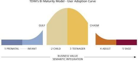 Il Maturity Model della Business Intelligence | Visualinfo | Scoop.it