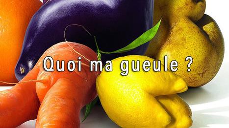 Victoire des légumes à la «Gueule Cassée» ! | Nouveaux paradigmes | Scoop.it