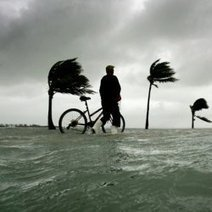 Popular Cities Battling Sea Level Rise | Amocean OceanScoops | Scoop.it