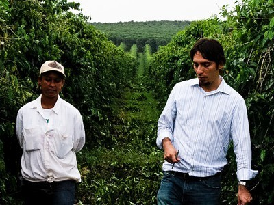 Can Fair Trade Coffee Be More Fair? | non-profit news and communication | Scoop.it
