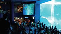 Kuroshio Sea - το 2ο μεγαλύτερο ενυδρείο του κόσμου | omnia mea mecum fero | Scoop.it