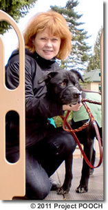 Project POOCH - Our History | Animal Assisted Therapy - Aspect 3 | Scoop.it