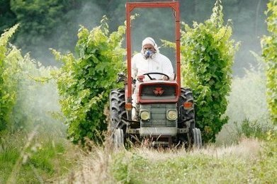 "Pesticides, un pavé dan s la barrique | ""Viticulture en gironde"" 